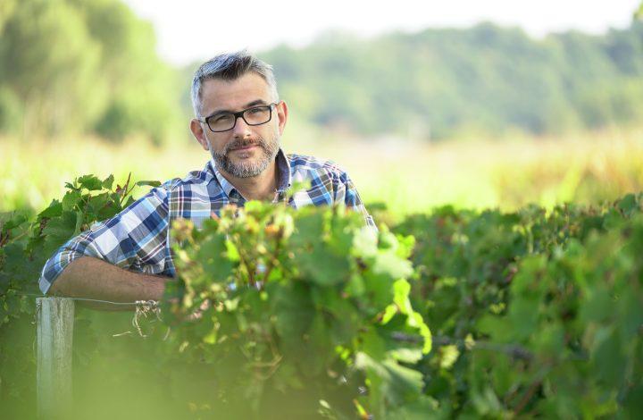 Conseil-cerfrance-viticulteur-cognac
