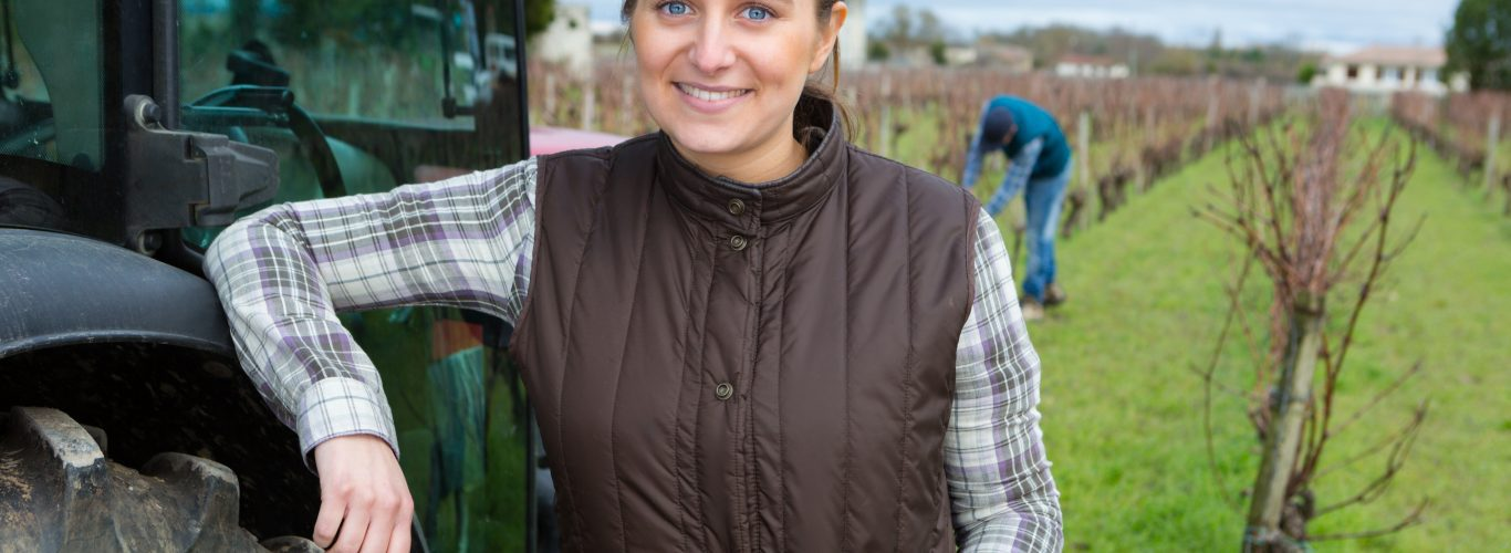 installation-reprise-conseil-viticulteur-cognac